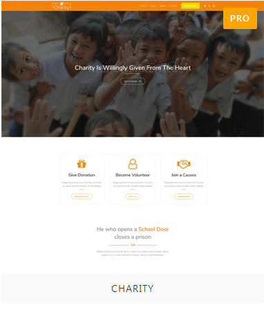 Charity Demo Site